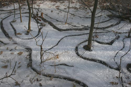 Swirly ice | by SeabrookeLeckie.com