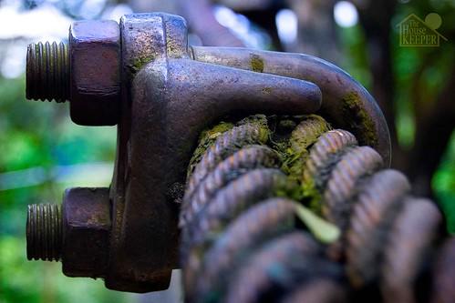 fun george nuts cable mateo gregorio thehousekeeper pinoykodakero teampilipinas flickristasindios litratistakami georgemateo gregoriomateo gcmateo