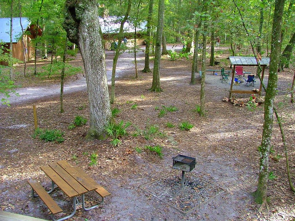 treehouse camp