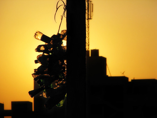 street sunset sun india silhouette bangalore streetphotography plastic planet environment concerned disgrace socialissues socialissue indianphotography theperfectphotographer worstinvention concernedaboutenvironment donotuseplastic daarklands rmv2ndstage rajmahalvilas
