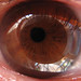 Kamera - Auge by Batikart