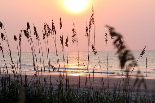 ocean reflection sc sunrise geotagged myrtlebeach seaoats smörgåsbord potofgold abigfave geo:lat=33659192 geo:lon=78916189