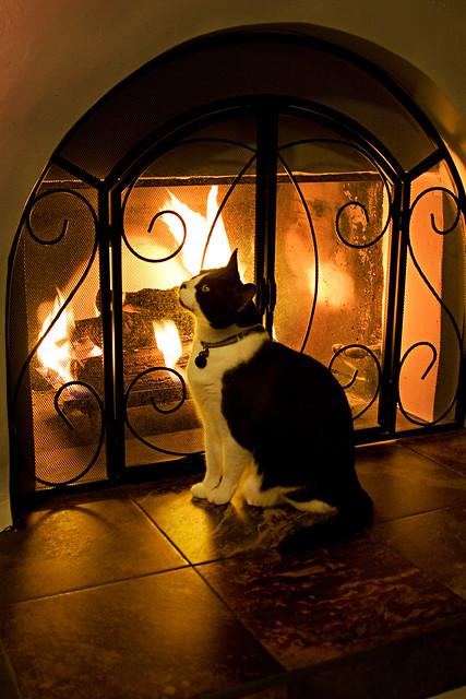 basil fireplace