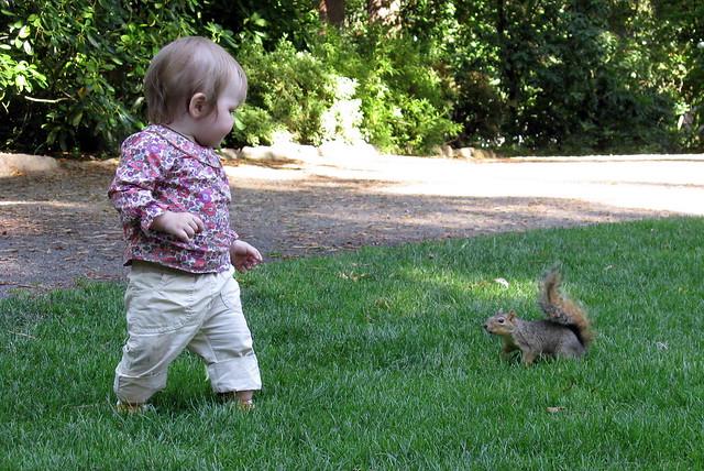 Maia meets a Squirrel