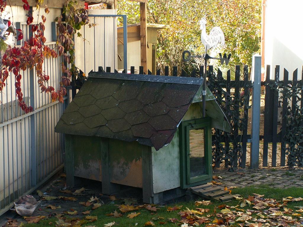 hundehuette-taubenheim-102
