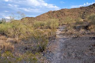Phoenix Mountain Preserve | by dbostrom