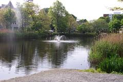 Butler's_Pond