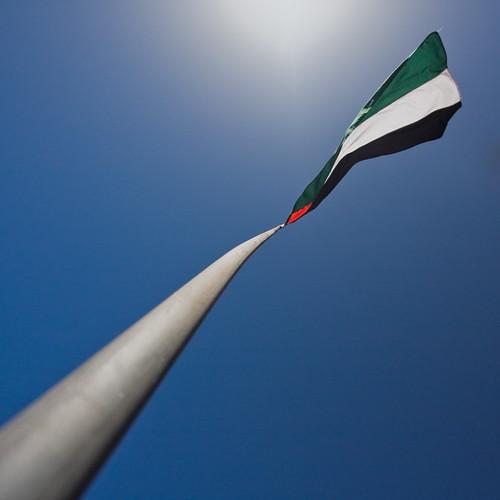 Jordanian flag in Petra by mouzhik