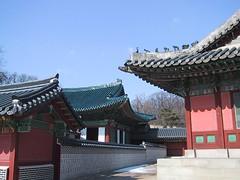 Seoul 41