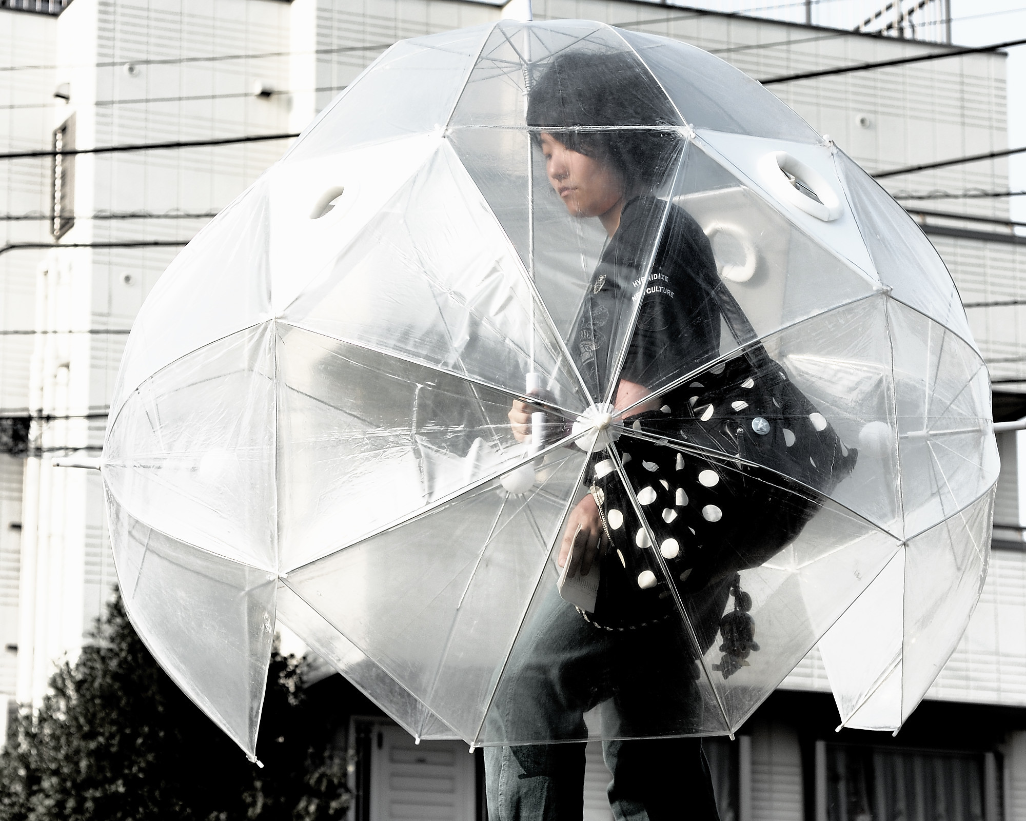 Cool Brolly