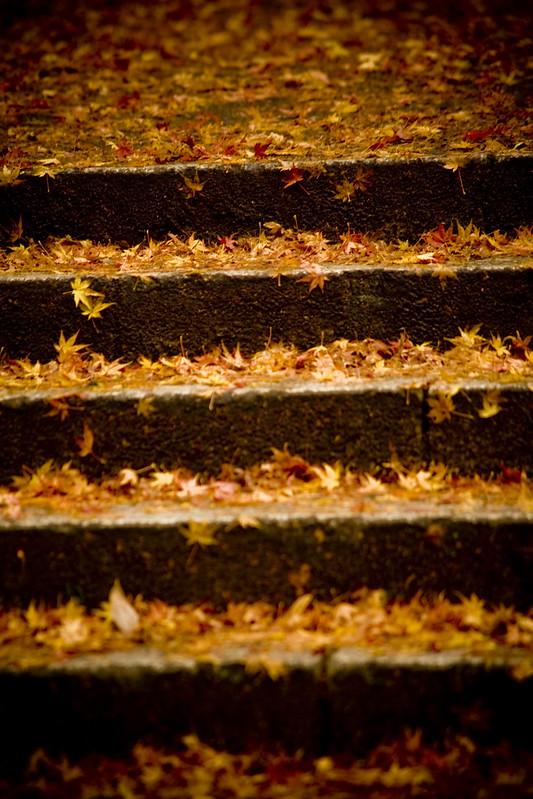 Minoo#19 - The autumn stairs