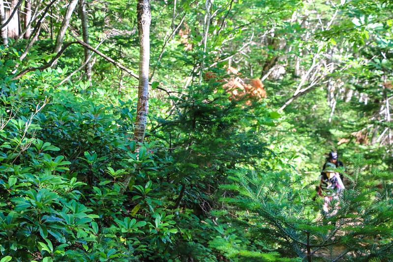 2014-07-21_01575_北海道登山旅行.jpg