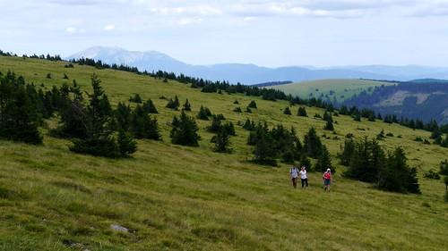 panorama alps robert landscape austria österreich petra meadows wiesen alm alpen ursula landschaft alp niederösterreich autriche schneeberg loweraustria mariensee hochwechsel marienseerschwaig wanderung20150725