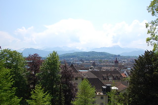 View of Lucerne From the Museggmauer   by edwin.11