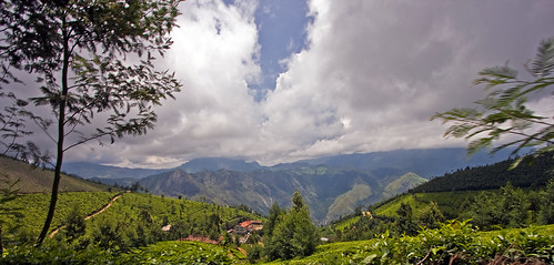 trip vacation may kerala 2008 southindia munnar idukki canon40d keralatrip2008