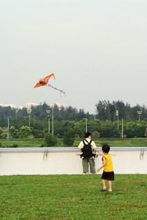 Fly Kite | by Jerry (jerrywongjh)