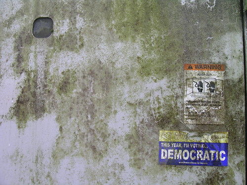 Voting Democratic | by zieak