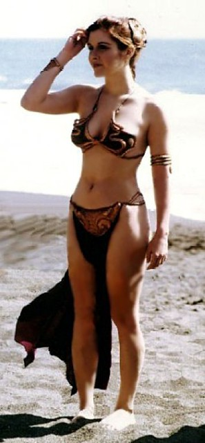 Princess Leia Slave Outfit 31 Barry Flickr