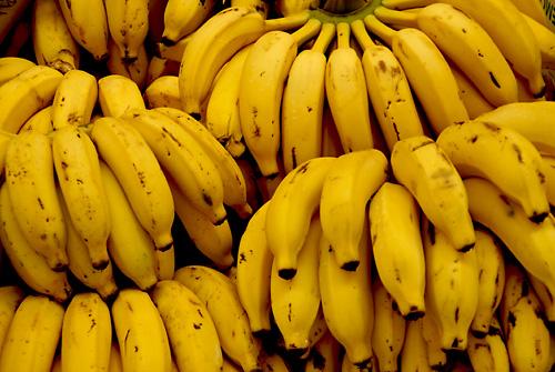 eu trago bananas pra vender | by @mands