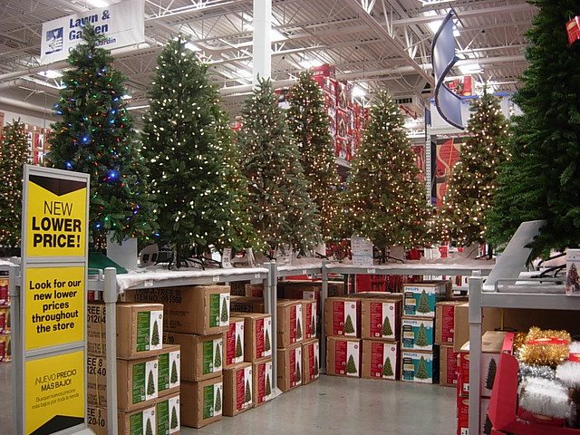 Lowes Christmas.Christmas Trees At Lowe S In Torrance Ca Seen November 6