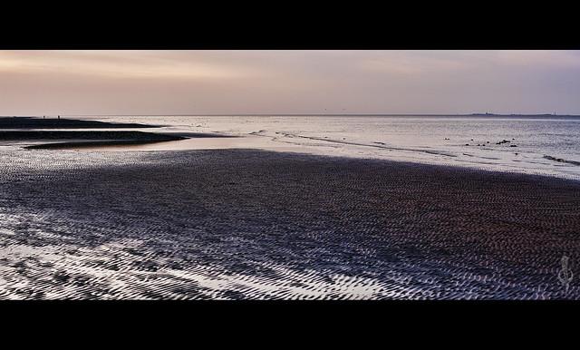 Lower Saxon Wadden Sea National Park Panorama