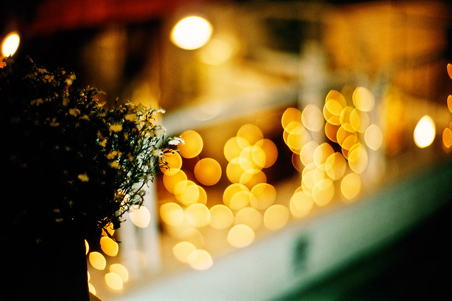 soft whispers of lights