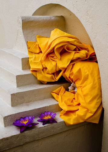 stilllife flower colour canon lotus robe buddhist form srilanka saffron goldentooth