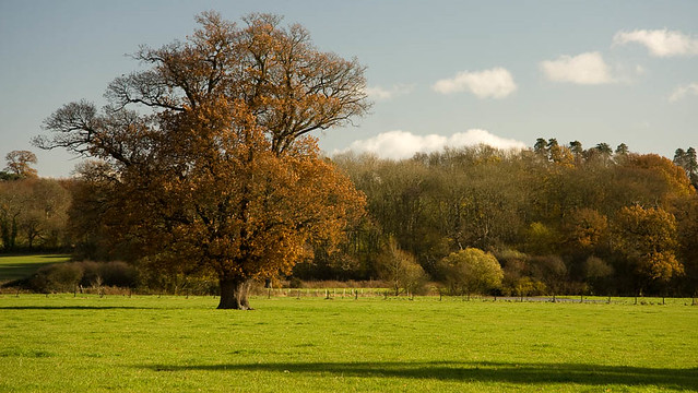 Kent in the Autumn The Eden Valley near Penshurst