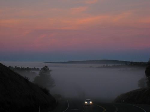 road car fog sunrise dawn headlights commute norcal hwy20 yubacounty challengeyouwinner