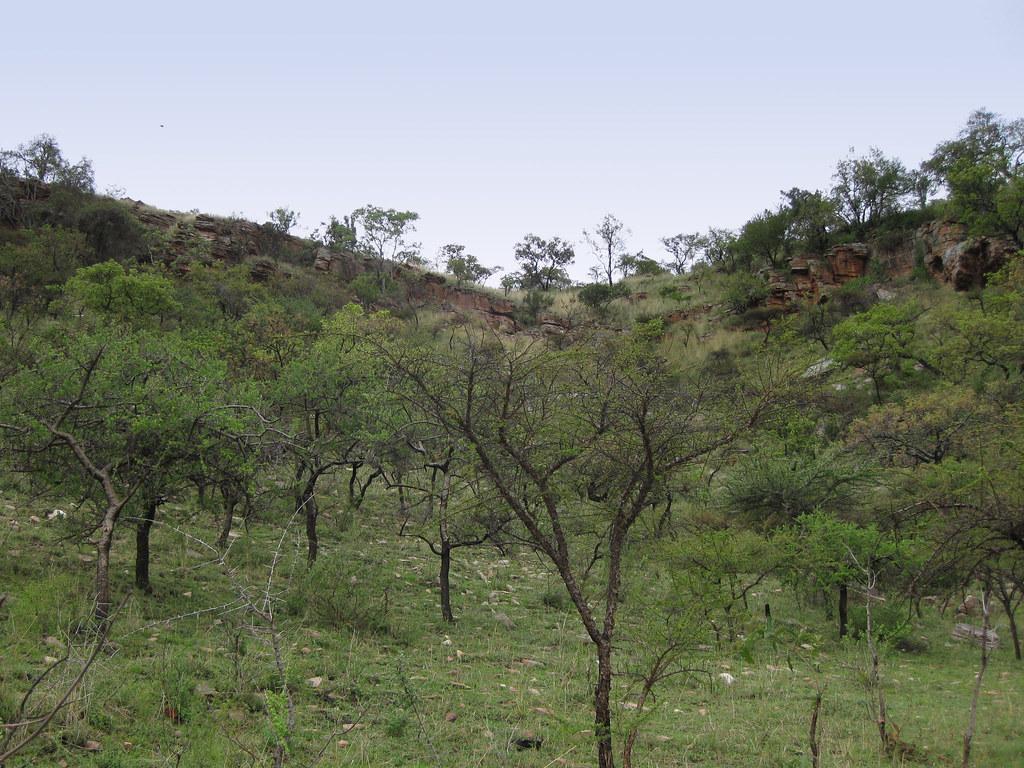 Toward the Brown hyaena cave