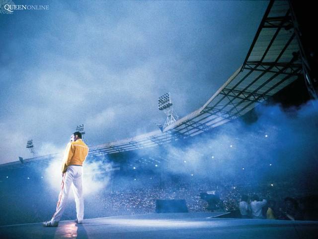 Freddie Mercury Wallpaper 45 Salvatoregiuffreda Flickr
