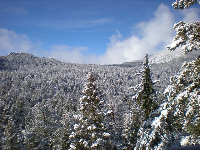 First snow of Winter 2008/2009 in Mt San Jacinto State Park