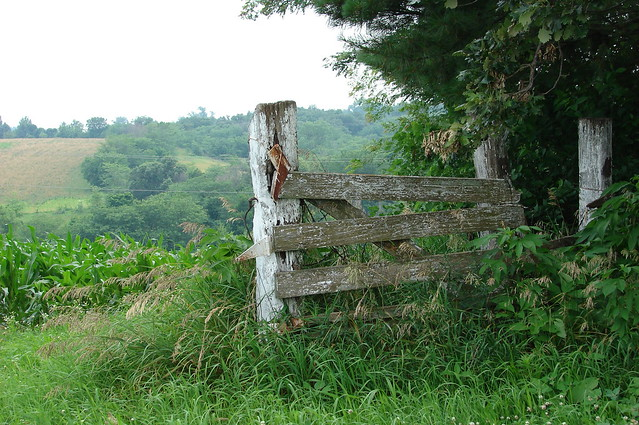 Old white fence and gate