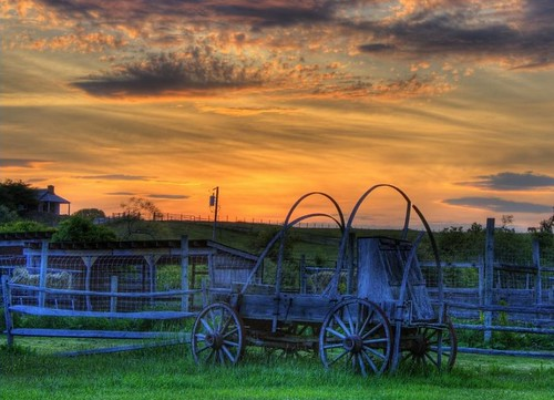 ocean ranch horses ny clouds wagon hamptons cattle longisland atlantic montauk hdr eastend 1658 deephollowranch platinumphoto heartawards theunforgettablepictures colourartaward llovemypics