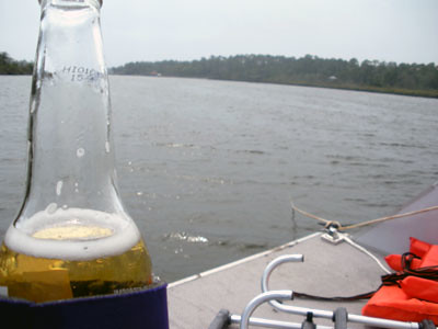 A Beer on the Pontoon Boat | by CraftyHope