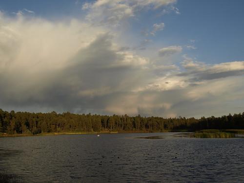 woodlandlake pinetoplakeside pinetop arizona nature pinetoparizona sunset arizonathunderstorms thunderstorms storms riparian riparianzone riparianarea riparianhabitat