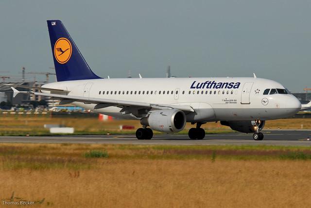 Lufthansa Airbus A319-114 D-AILN Idar-Oberstein (18773 ...