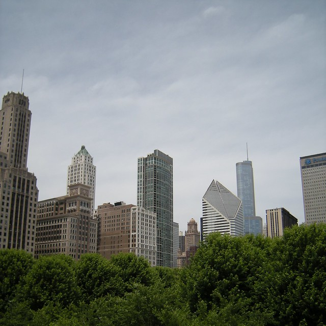 Towers over tree tops, Chicago (USA)