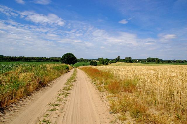 Feldweg bei Dambeck / Mecklenburg-Vorpommern