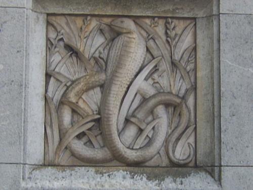African Snake!   by Wyrmworld