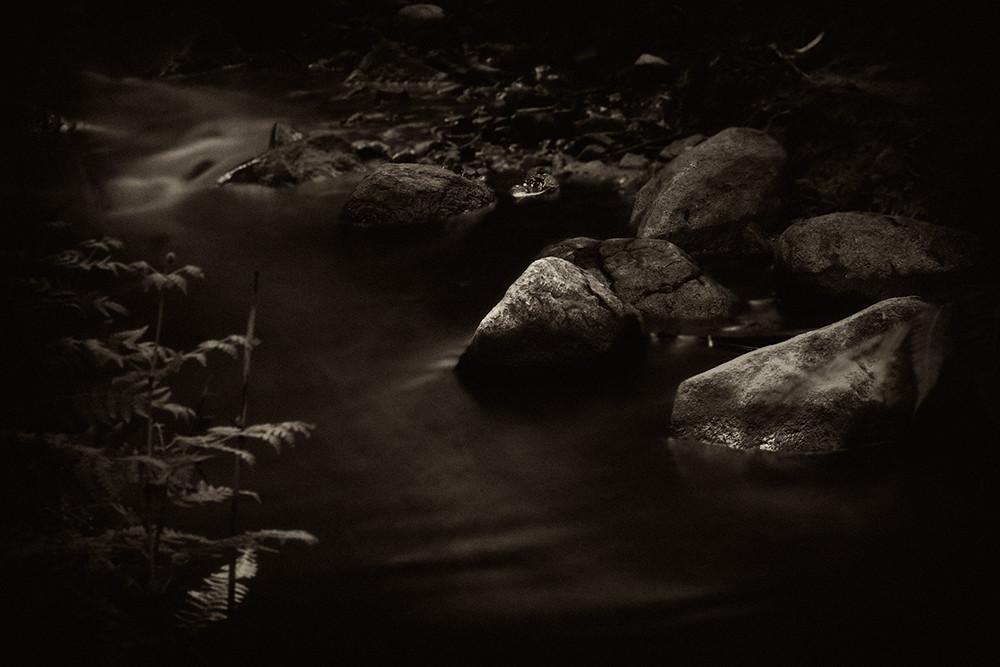 The Stream by .Nigel.