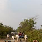 14 Battambang 04