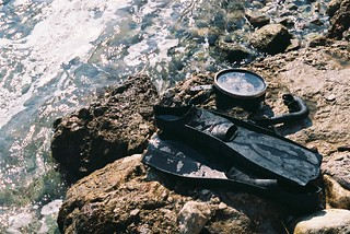 Flippers | by Ellen Munro