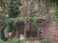 6BC Botanical Garden | 开放绿地图