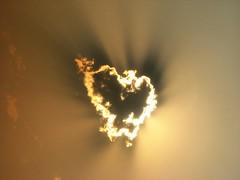 South Africa, Johannesburg: Love in the air | by kool_skatkat