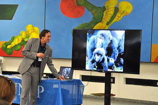 Photo Exhibition Great Apes at the Crossroads - Survival or Extinction? on the Occasion of World Environment Day