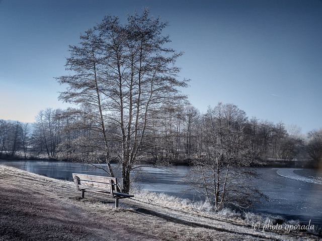 Frozen Environment - Infrared