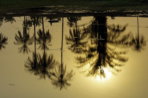 sunset reflection tropical serene water mirror nigeria uyo ibom