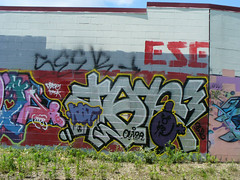 Stop 'n' Lock Graffiti Wall, 2008.06.14   by tgkohn