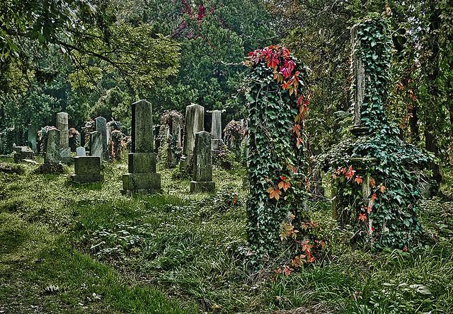Wien, Zentralfriedhof, Vienna Cemetery, Jewish Section.